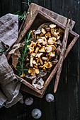 Fresh chanterelle mushrooms in a wooden box