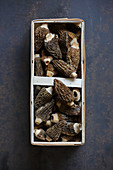 Morel mushrooms in a wooden basket