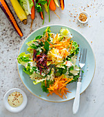 Raw vegetable salad with colourful carrots