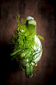 Fresh Fennel from Top