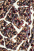 Raw chocolate bark with sorgum cereal and dried pomegranate