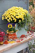 Gelbe Chrysantheme und Stiefmütterchen
