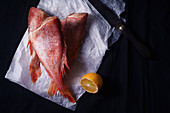 Raw uncooked fish perch on black background with lemon