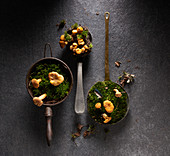 Chanterelles with moss in vintage containers