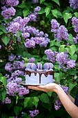 Purple buttercream and chocolate cake in woman's hands in a garden