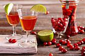 Homemade cornelian liqueur with limes, candy, cinnamon, vanilla and rum
