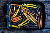 Verschiedenfarbige Karotten auf Backblech