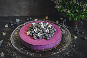Blackberry cheesecake with a biscuit base and blueberries