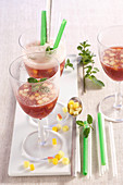 Sangria 'Andaluz' made with red wine, brandy, champagne and fruit pieces