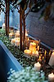 Weihnachtliche Kerzndekoration mit weißen Stumpenkerzen in Glaswindlichtern