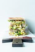 A toasted egg salad sandwich
