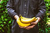 Mann hält frisch geerntete Bananen