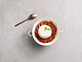 Sour cream panna cotta with strawberries (low carb)