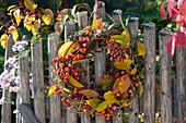 Herbstkranz mit Zieräpfeln, Hagebutten und Ligusterbeeren am Zaun