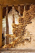 Mud and straw wall construction