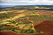 Agricultural landscape in Hawaii, aerial photograph