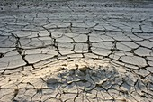 Water shortage and drought