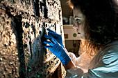 Restoration of Roman bronze box from Pompeii