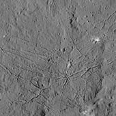 Dantu Crater, Ceres, satellite image