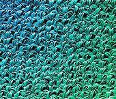 Low- friction textile, SEM