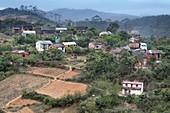 Subsistence farming in rural Madagascar