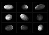 Spin of Pluto's moon Nix, illustrations