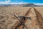A farm plow in a furrow on farmland, Somenkong, Lesotho