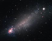Irregular galaxy NGC 4861, HST image