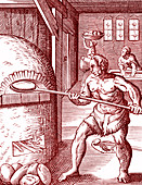 16th Century baker, illustration