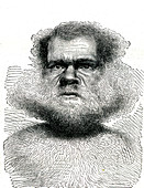 19th Century Tasmanian man, illustration