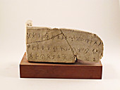 Phoenician limestone inscription from Cyprus