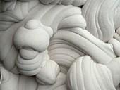 Gogotte fossilised sandstone concretion, close-up