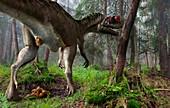 Ceratosaurus dinosaur defecating, illustration