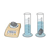 Measuring the density of an object, illustration