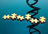 Jigsaw pieces and dna strand, illustration
