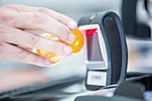 Pharmacist using barcode reader