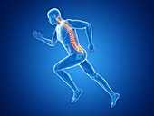 Illustration of a jogger's spine