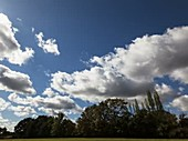 Timelapse of cumulus humilis clouds after frontal passage