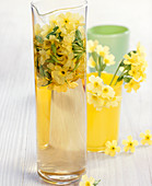Homemade vinegar with fresh primroses in a test tube