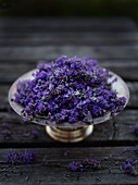 Fresh lavender flowers in a silver bowl on a wooden surface