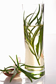 Homemade tarragon vinegar in a cylindrical glass