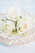 Pastellfarbene Rosenblüten als Tellerdekoration