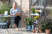 Frau dekoriert Chili -Kranz, Chilipflanzen im Regal