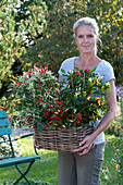 Frau trägt Korbkasten mit verschiedenen Chili-Pflanzen
