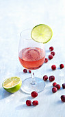 Cranberry martini cocktail with vodka and lime