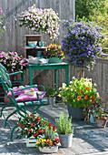 Balkon mit Enzianbaum, Chili, Kapuzinerkresse und Zauberglöckchen