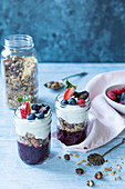 Oat granola with nuts and dreid fruit with fruit puree, berries and yogurt