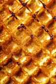 Waffle texture with chocolate drops