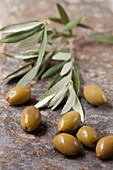 Green olives and olive branches