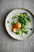 Fried egg on purslane salad with argan oil